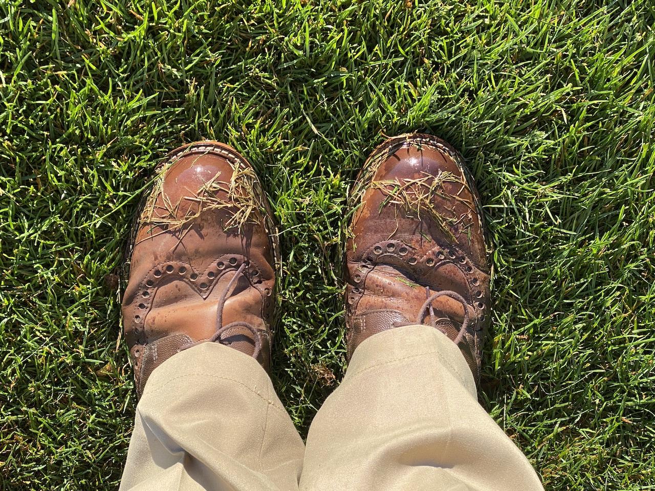 Meine Wahl: ECCO Herren Men's Golf Lux Golfschuhe